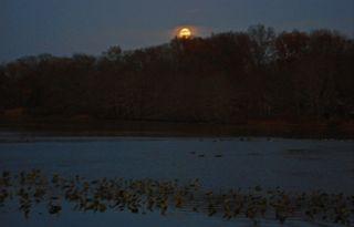 Moonrise-at-millcreek