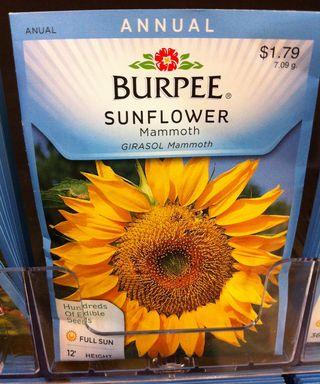 SunflowerSeedPack